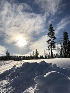 Oldtimer im Winter fahren
